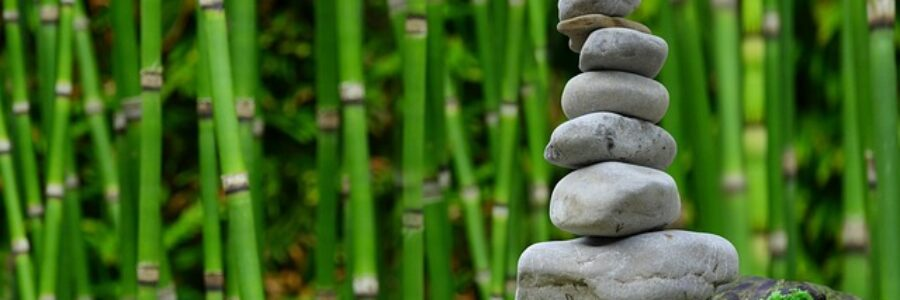 Balanced Carin in Bamboo Forest - Traditional Chinese Medicine and Eczema