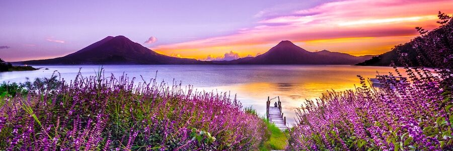 Lavender field with dock, water, and mountains at sunset - Nodular acne and herbal medicine